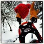 Schneeschuhwandern am Fichtelberg